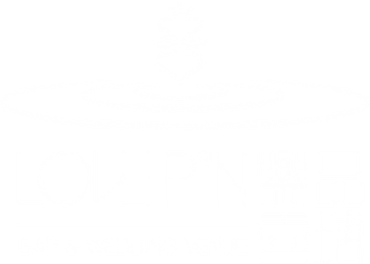 LovePin_logo_white.png