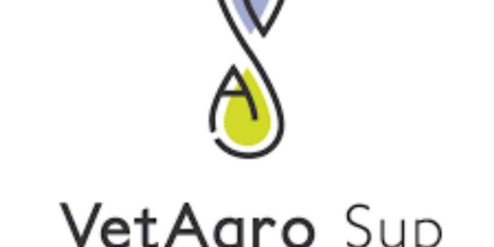 Séminaire VetagoSup_Agriculture et Anthropocène