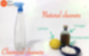cleaning_products.png