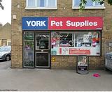 York Pet Supplies