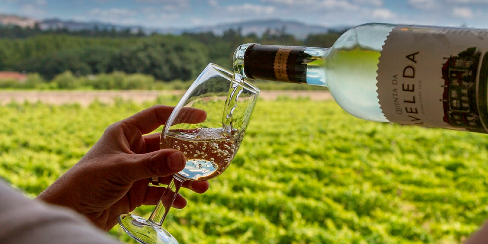 Teddington Wine Society explores Portugal