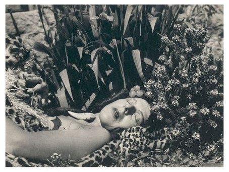 Vegetation, Creativity, Confession and Androgyny within female surrealists and their legacies