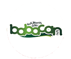 babacan.png