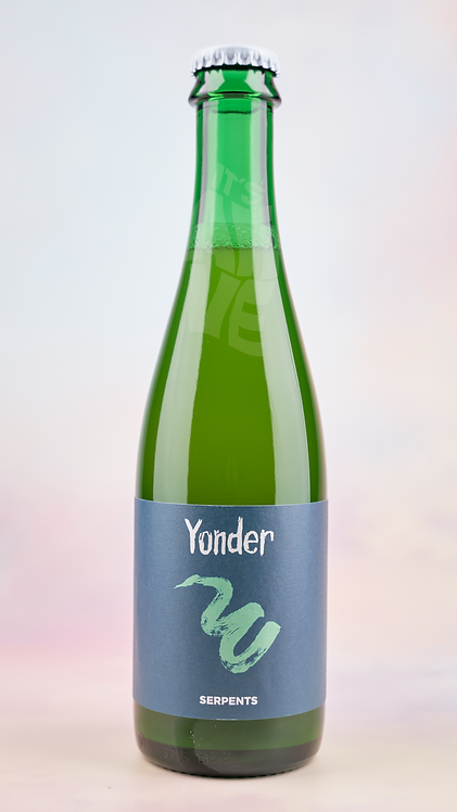 Yonder Serpents Wild Ale 375ml bottle