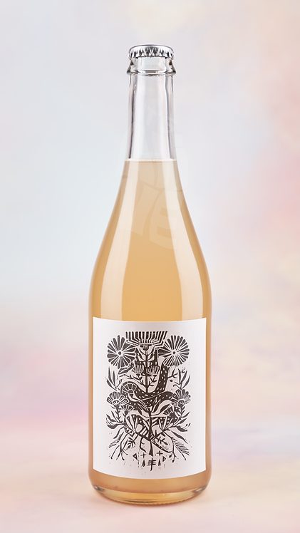 Offbeat Wines The Search 2020