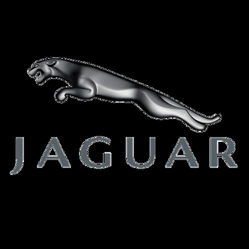 Politur (Jaguar) - ab 120 CHF pro Scheinwerfer