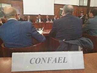 CONF.A.E.L. al tavolo delle trattative su Alitalia