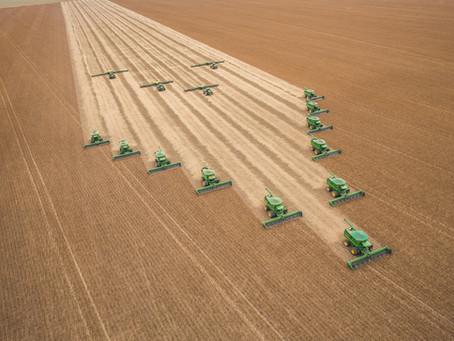 Nova Lei do Agro traz mecanismos importantes para o produtor rural