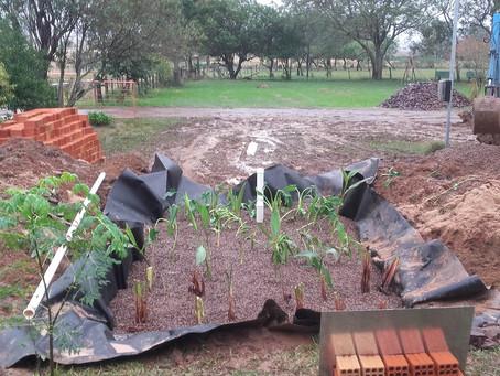Comunidade rural de Alegrete recebe sistema ecológico de saneamento