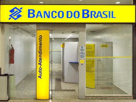 Arrozeiros já podem procurar Banco do Brasil para renegociar custeios