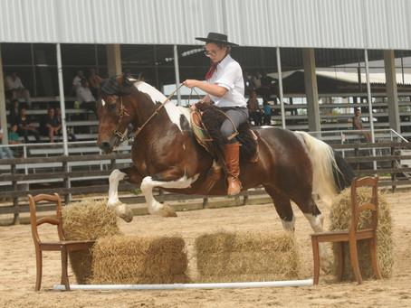 Prova funcional do Mancha Crioula une famílias pelo cavalo
