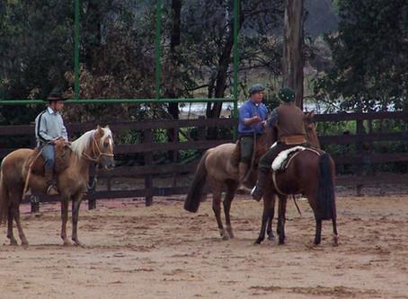 Doma de cavalos gera oportunidades no mercado de trabalho