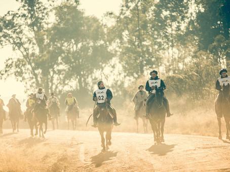 Marcha completa programação da Copa do Mundo do Cavalo Crioulo