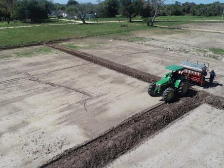 Inovação marca o início do plantio da área da Abertura da Colheita do Arroz