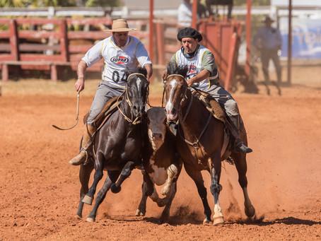 Distrito Federal desponta no cenário do cavalo Crioulo
