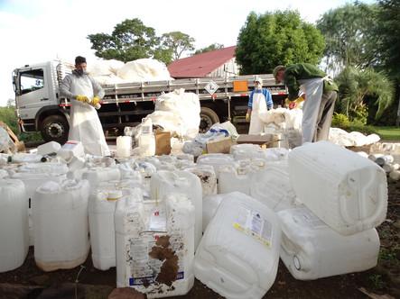Ação da Languiru recolhe mais de dez mil embalagens de agrotóxicos