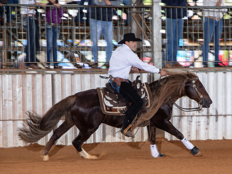 Cavalo Crioulo garante vaga nos Jogos Equestres Mundiais
