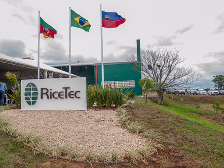 RiceTec anuncia plano de reorganização das operações no Mercosul