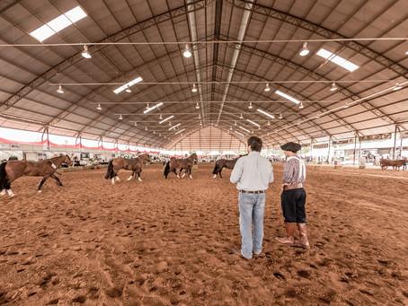 Avaré recebe novamente importante evento do cavalo Crioulo