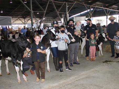 Concurso Jovem Puxador incentiva amor pela atividade leiteira