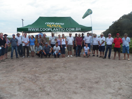 Dia de Campo em Pelotas discute soja e manejo de plantas daninhas