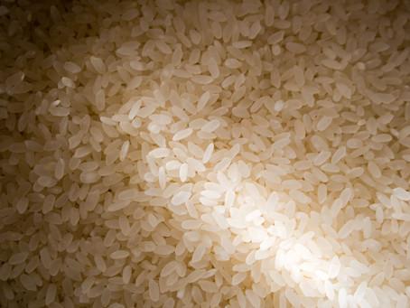 Exportações brasileiras de arroz em dezembro são recordes