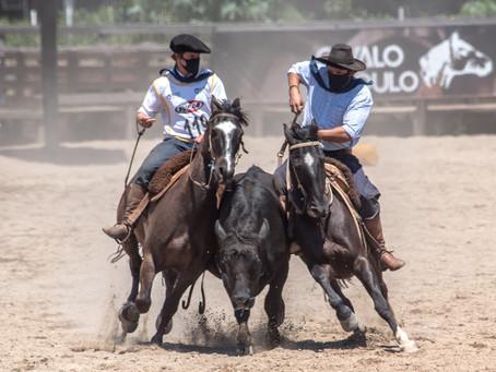 Cavalo Crioulo dá continuidade ao ciclo com final da Paleteada