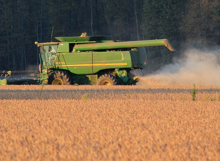 Entidades têm até o dia 29 para aderir à negociação coletiva do seguro agrícola
