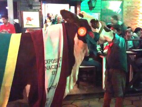 Venda de animais na Expointer deve se manter igual à 2014