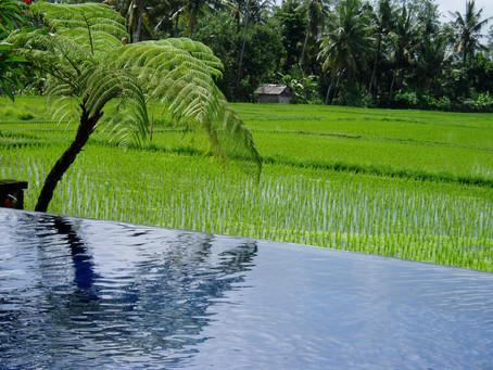 Produtores podem rever termos de plano de regularização de irrigação