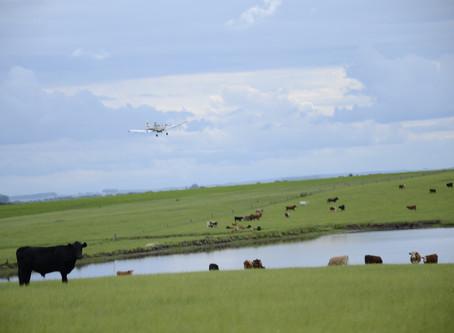 Produtores devem ficar atentos aos valores da terra nua cobrados no ITR