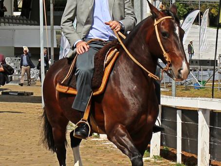 Ministro da Agricultura monta em cavalo Crioulo na Expointer