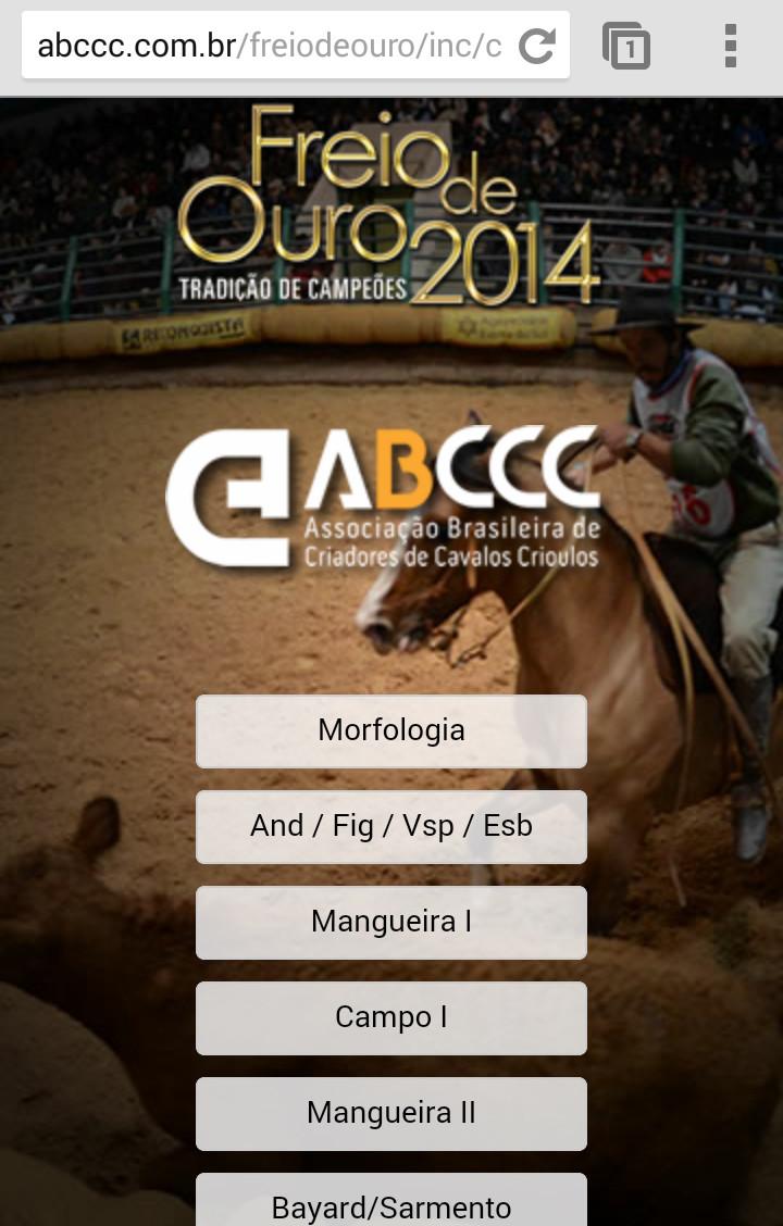 Tela ABCCC Freio 1.jpg