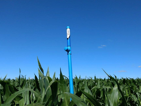Controle de irrigação reduz custos e aumenta produtividade