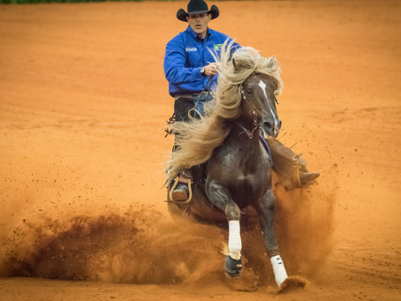 Cavalo Cavalo Crioulo garante vaga na final do Mundial