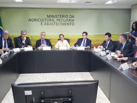 Ministério da Fazenda promete proposta para endividamento no arroz