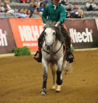 Raça Crioula tem vaga garantida nos Jogos Equestres Mundiais