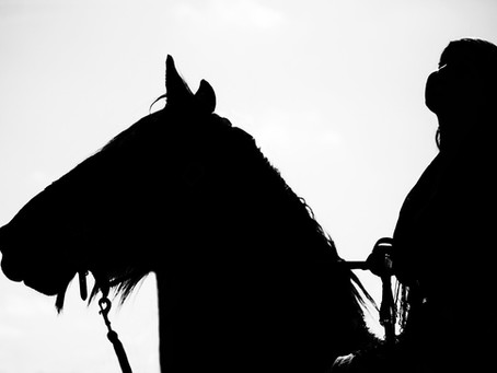 Cavalos nos festejos Farroupilhas necessitam preservação do bem estar