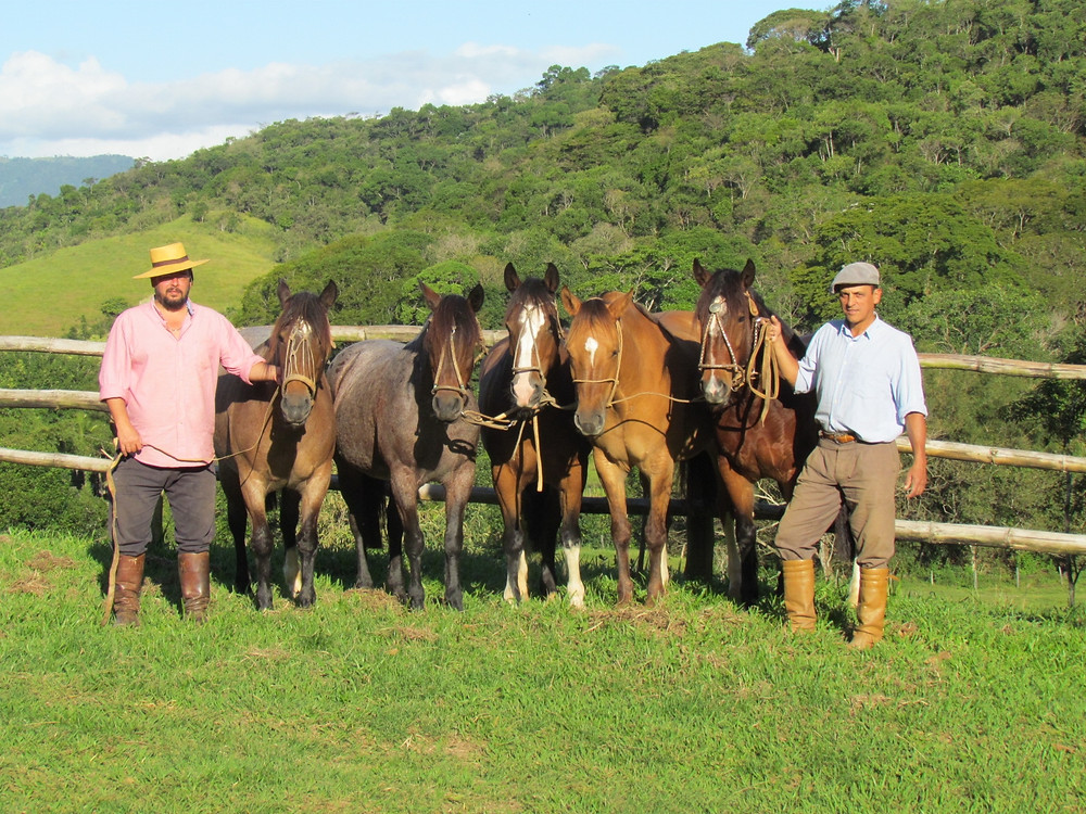 Cavalos_Crioulos_na_Além_do_Tempo.JPG