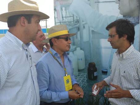 Ministra confirma abertura de mercado mexicano para o arroz brasileiro