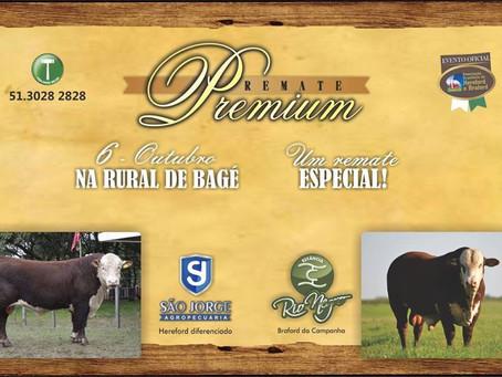 Remate Premium alcança R$ 686,55 mil em comercialização