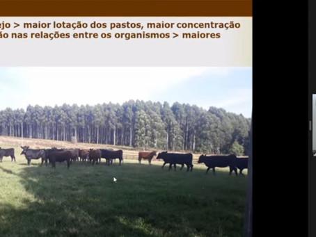 Chegada da primavera traz alerta sobre infestação do carrapato bovino