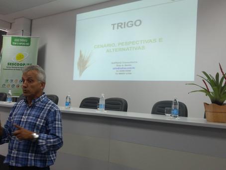 Cenários da soja e trigo são debatidos em seminário na Expointer