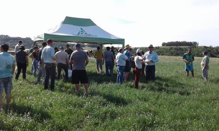 Cotrirosa realiza Dia de Campo do setor leiteiro
