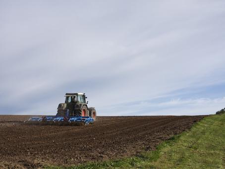 Justiça reconhece nulidade de multas trabalhistas contra produtores