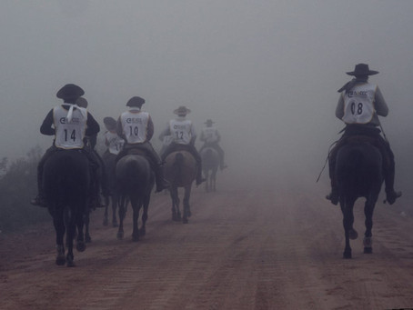 Foi dada a largada para a Marcha Anual de Resistência do Cavalo Crioulo