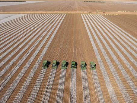 SLC Agrícola investe em inovação para garantir ganhos em eficiência