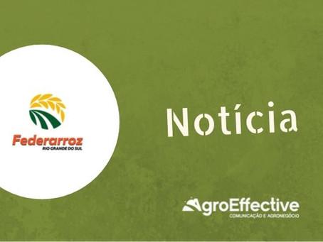 Entidades convocam mutirões para renegociação de vencimentos do arroz