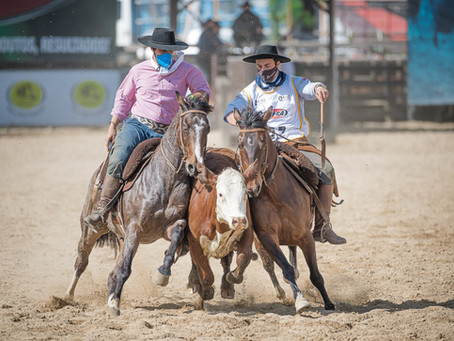 Final Nacional de Paleteadas define campeões do ciclo do Cavalo Crioulo