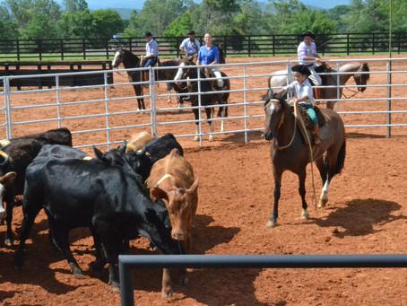 ABCCC promove clínica de Ranch Sorting com a RSNC